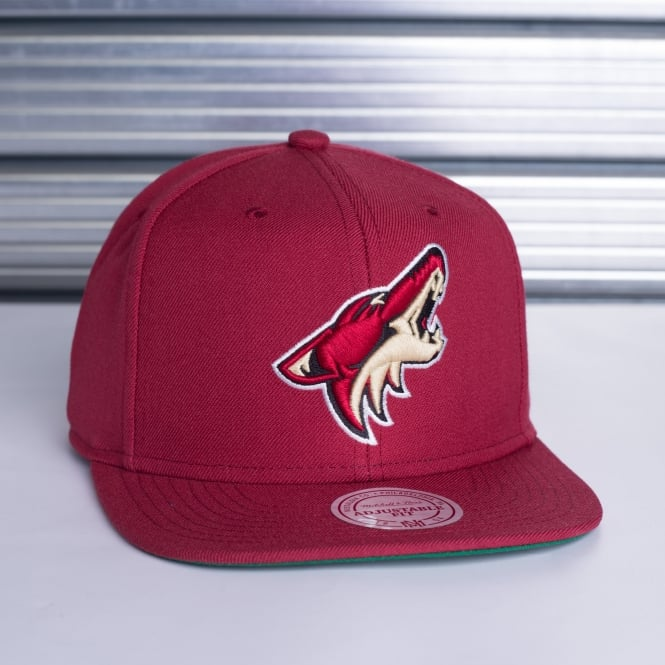 Mitchell & Ness NHL Arizona Coyotes Basic Solid Team Snapback