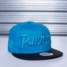 NFL Carolina Panthers Tonal Word Split 9Fifty Snapback Cap